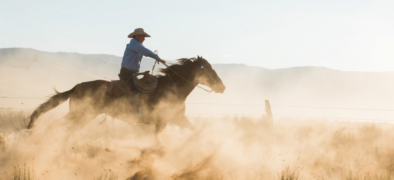 San Luis Obispo Equine Photographer Elizabeth Hay